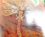 Online jewelry brooch retail store supplies Gold plated dragonfly designed fashion pin inlaid with amber and clear cz stones throughout body and wings